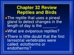 chapter 32 review reptiles and birds9