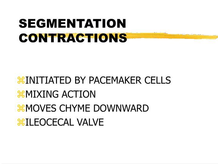 SEGMENTATION CONTRACTIONS