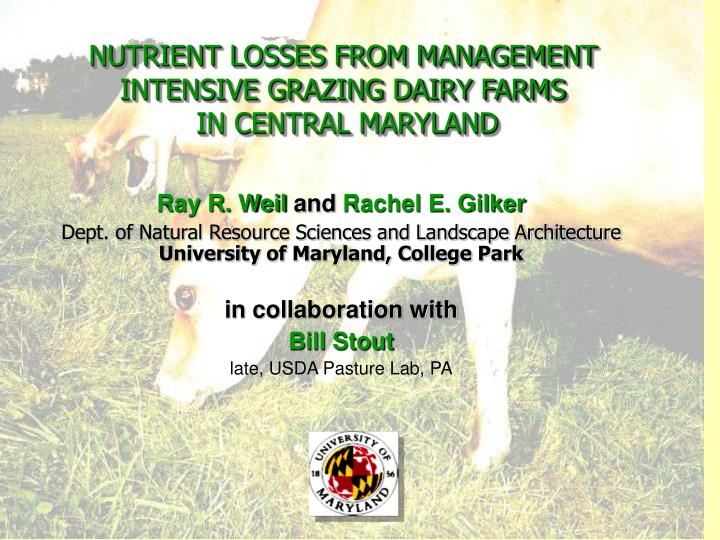 nutrient losses from management intensive grazing dairy farms in central maryland n.