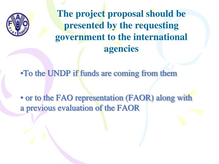 The project proposal should be presented by the requesting government to the international agencies