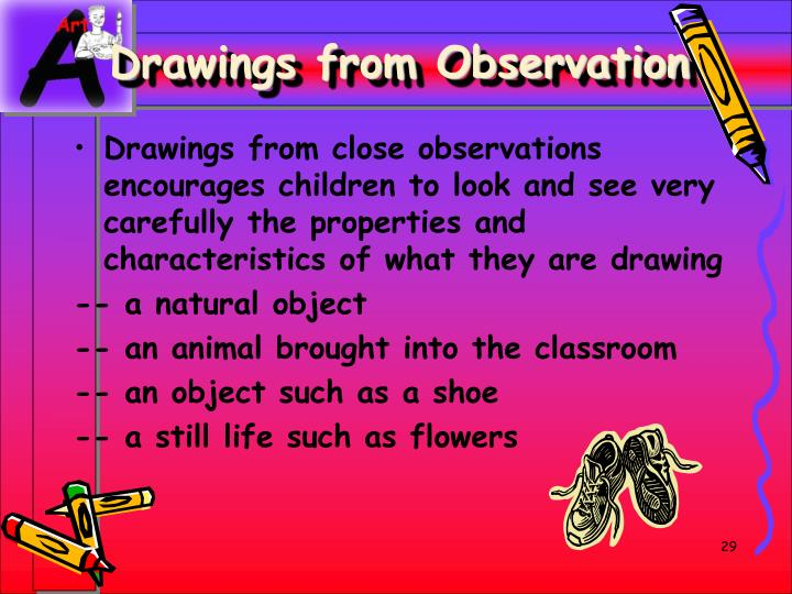 Drawings from Observation