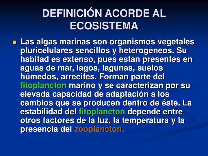 DEFINICIÓN ACORDE AL ECOSISTEMA
