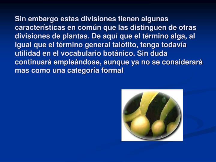 Sin embargo estas divisiones tienen algunas características en común que las distinguen de otras divisiones de plantas. De aquí que el término alga, al igual que el término general talófito, tenga todavía utilidad en el vocabulario botánico. Sin duda continuará empleándose, aunque ya no se considerará mas como una categoría formal