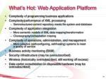 what s hot web application platform