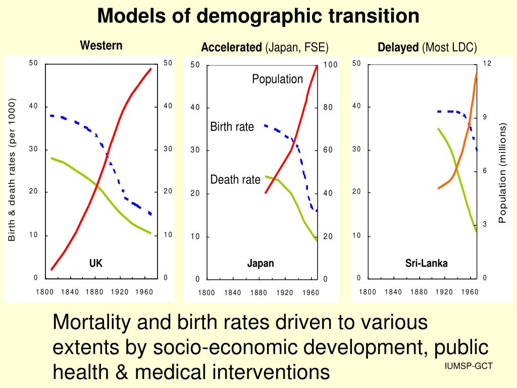 Models of demographic transition