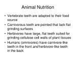 animal nutrition10