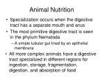animal nutrition3