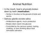 animal nutrition9