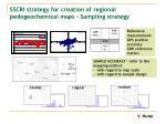 sscri strategy for creation of regional pedogeochemical maps sampling strategy