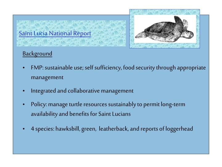 Saint lucia national report