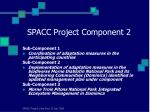 spacc project component 2