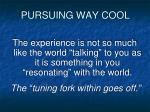 pursuing way cool1
