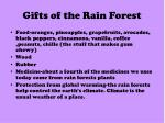 gifts of the rain forest