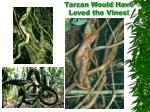 tarzan would have loved the vines