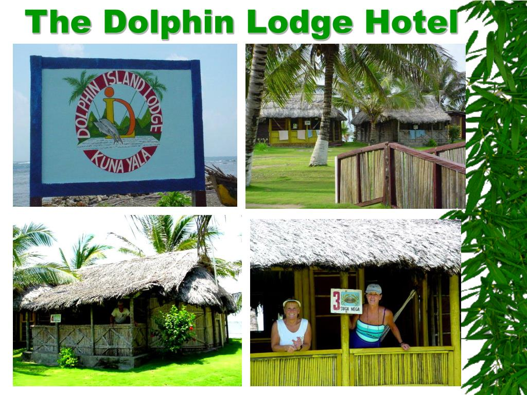 The Dolphin Lodge Hotel