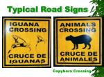 typical road signs