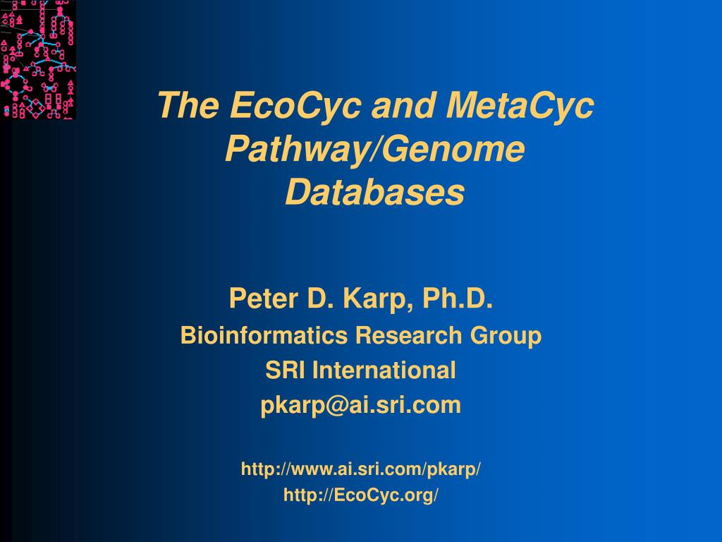 the ecocyc and metacyc pathway genome databases l.