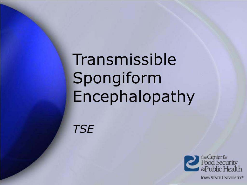 transmissible spongiform encephalopathy l.