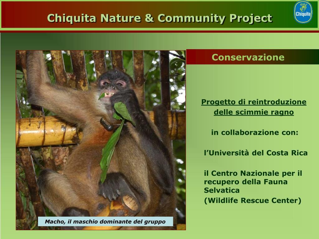 Chiquita Nature & Community Project