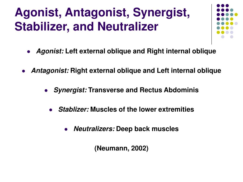 Agonist, Antagonist, Synergist, Stabilizer, and Neutralizer
