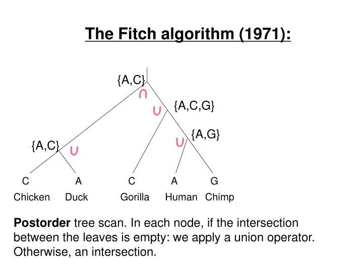 The Fitch algorithm (1971):
