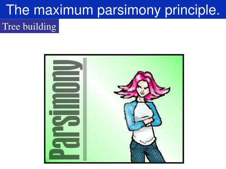 The maximum parsimony principle.