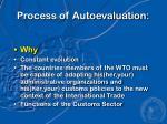 process of autoevaluation
