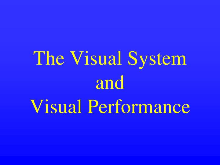 the visual system and visual performance n.