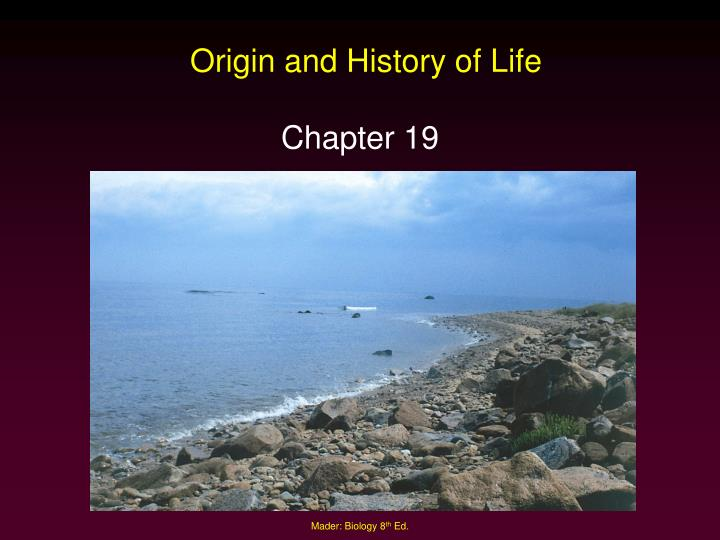 origin and history of life n.