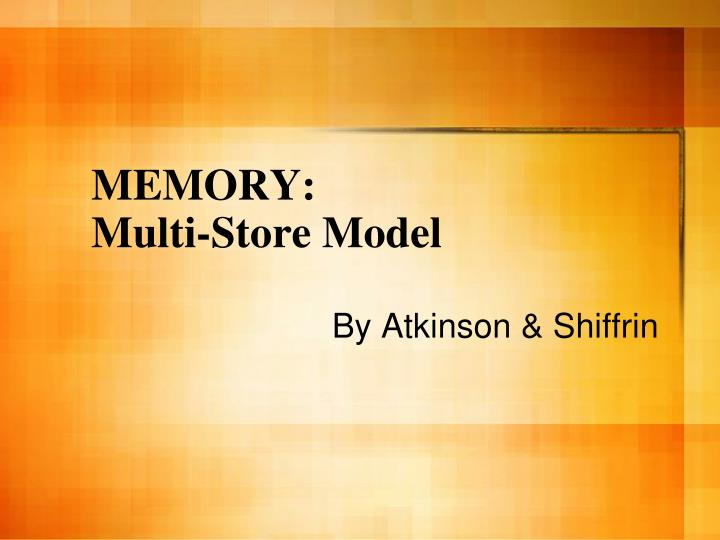 outline and evaluate the multi store
