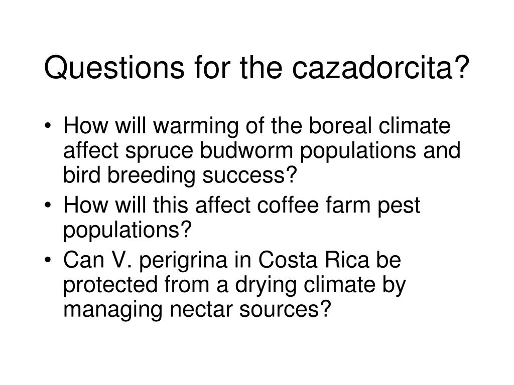 Questions for the cazadorcita?