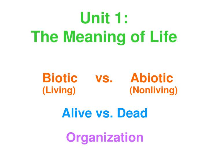 unit 1 the meaning of life n.