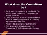 what does the committee do2