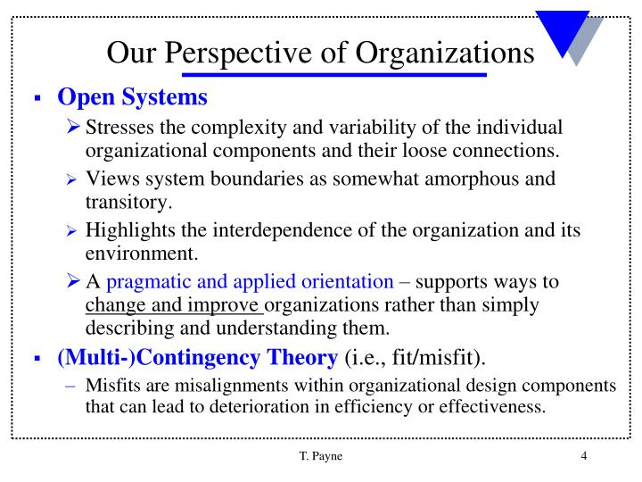 Our Perspective of Organizations