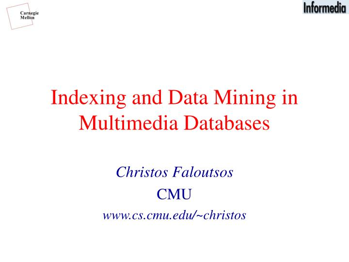 indexing and data mining in multimedia databases n.
