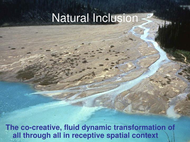 Natural Inclusion