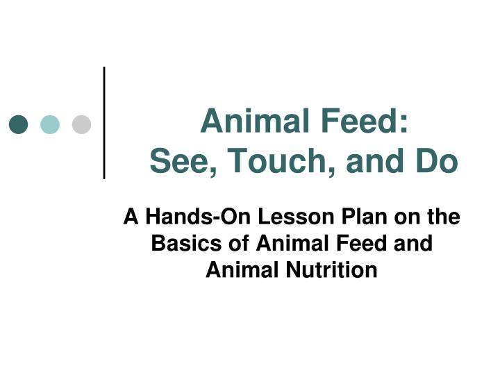 animal feed see touch and do n.