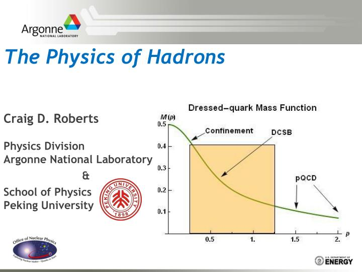 the physics of hadrons n.