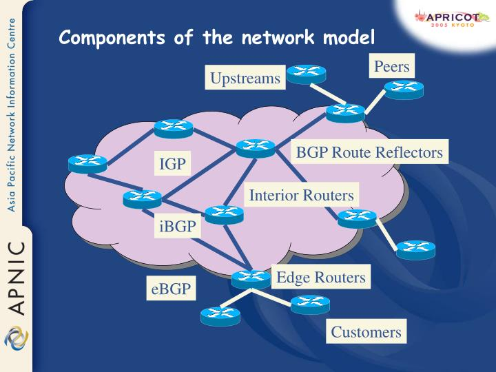 Components of the network model