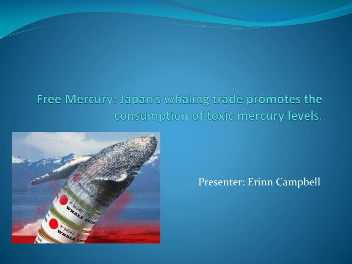 free mercury japan s whaling trade promotes the consumption of toxic mercury levels n.