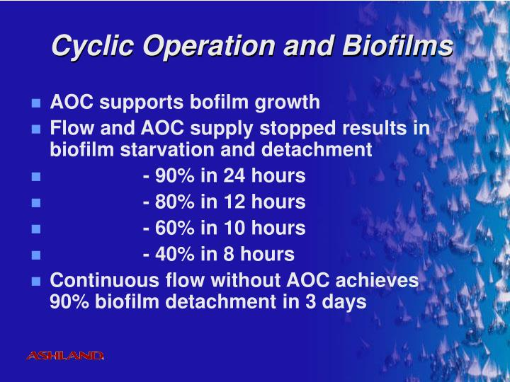 Cyclic Operation and Biofilms