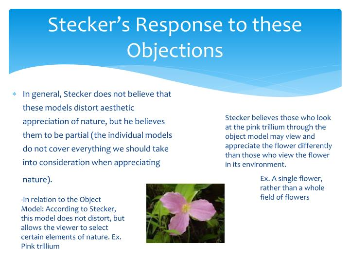 Stecker's Response to these Objections