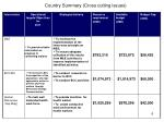 country summary cross cutting issues