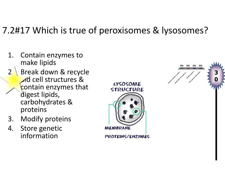 7.2#17 Which is true of peroxisomes & lysosomes?