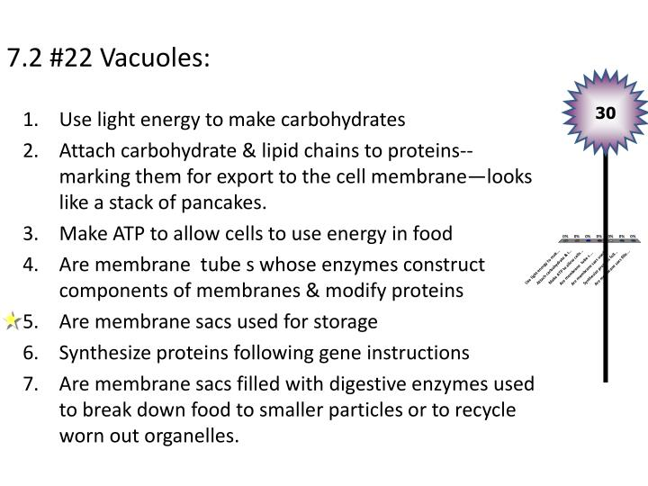 7.2 #22 Vacuoles: