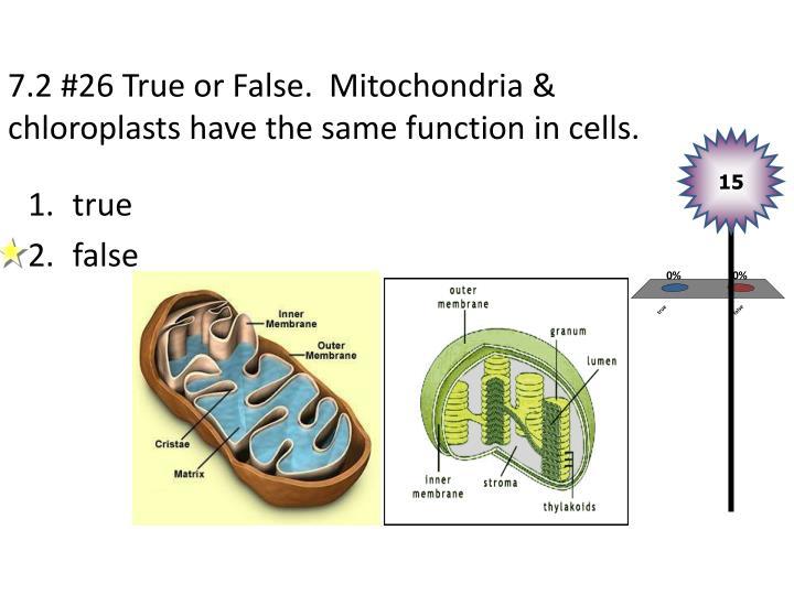 7.2 #26 True or False.  Mitochondria &