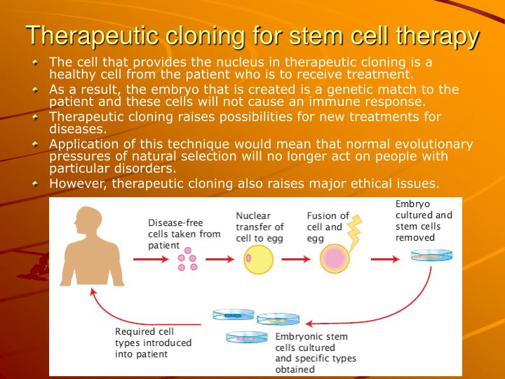 the ethical dilemma of therapeutic cloning Ethics and induced pluripotent stem cellsthe recent development of further analysis of the new technique and its subsequent ethical issues could potentially.
