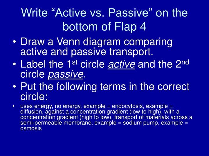 Ppt Transport Foldable Powerpoint Presentation Id1072922