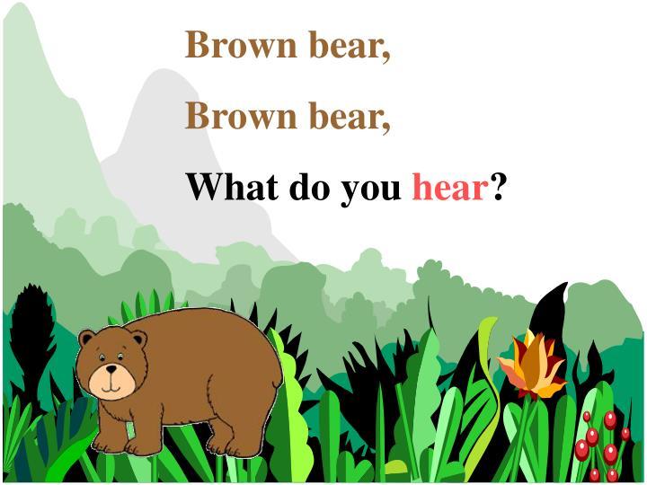 Brown bear,