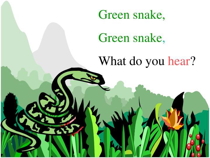 Green snake,